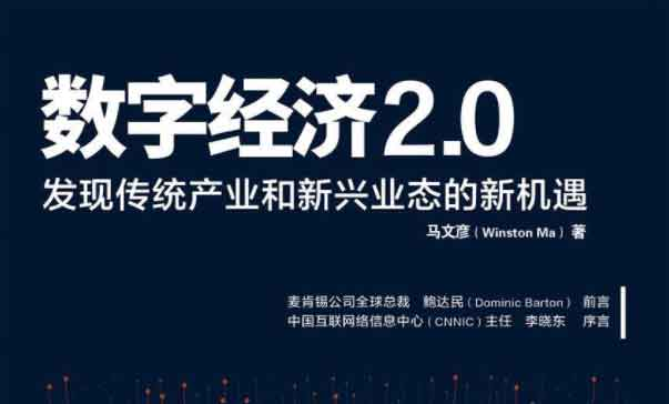 数字经济2.0(.pdf.epub.txt.mobi)-百度网盘-下载