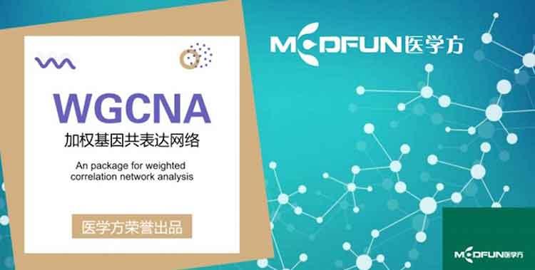 豪斯医生数据挖掘之WGCNA详解-百度网盘-下载