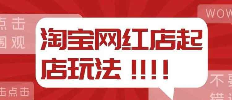 淘宝网红店起店玩法-百度网盘-下载