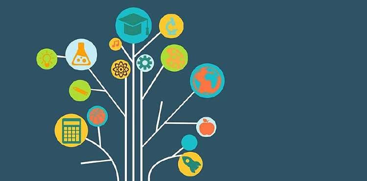 知识树成人版第5期-百度网盘-下载
