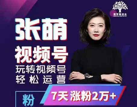 张萌萌姐个人品牌训练营-百度网盘-下载